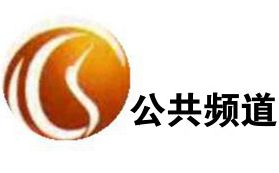鹤岗电视台公共频道